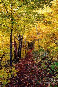 North Shore Minnesota Fall Colors