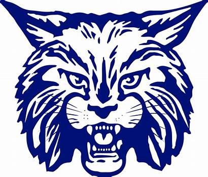 Clipart Bobcat Transparent Bobcats Dimmitt Scorestream West