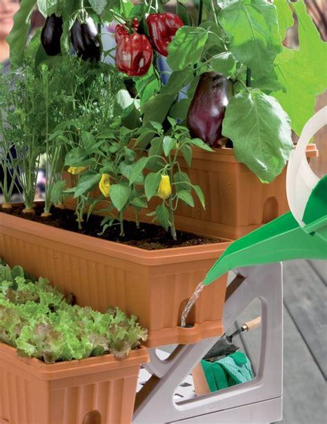 fragole in vaso coltivazione vasi in verticale soluzione salvaspazio per l orto sul