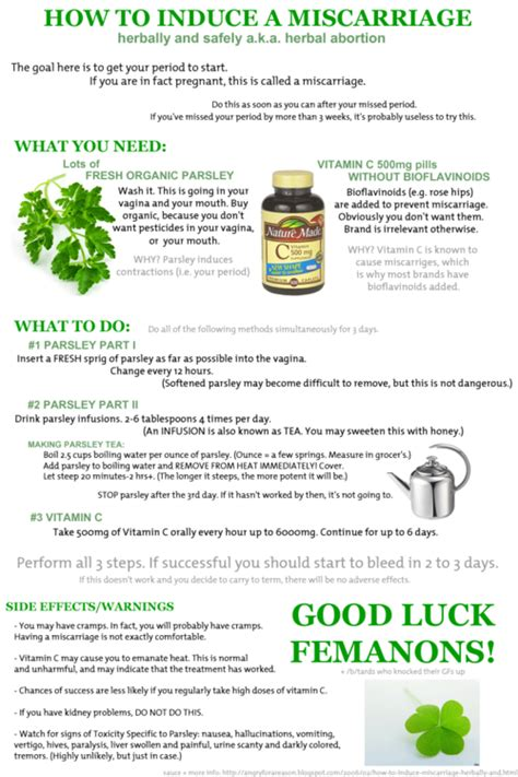 Useful Responces To The Parsley And Vit C Herbal Abortion. West Coast College Anaheim Nortel Pbx System. Business Schools Minnesota Us Bank Sba Loans. No Credit Check Car Insurance. Forensic Psychology Degrees Online. Antivirus Software Packages Rsync Windows 7. Replica Printing Philadelphia. Bottoms Insurance Rocky Mount Nc. Comparing Medical Insurance Plans