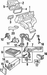 Cadillac Catera A  C Expansion Valve Seal Kit  Conditioning