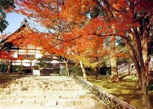 Was Bedeutet Zen : der zen garten des ryoanji tempels in kyoto roman daniela jost m bel im traditionellen ~ Frokenaadalensverden.com Haus und Dekorationen