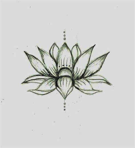 lotus flower drawing lotus flower drawing sketch feet