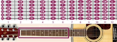 fretboard  notes   guitar