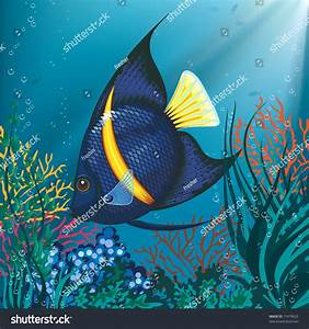 Tropical Fish Swimming Underwater Above Water Stock Vector ...