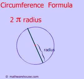 Circumference Of A Circle Explained With Examples