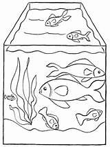 Ausdrucken Fische Aquarium Zum Aquariumfische Malvorlagen Ausmalbilder Schoene sketch template