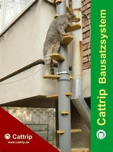 katzentreppe balkon kaufen katzenleiter katzentreppe balkontreppe balkonleiter kratzbaum wendeltreppe bausatz freigänger in