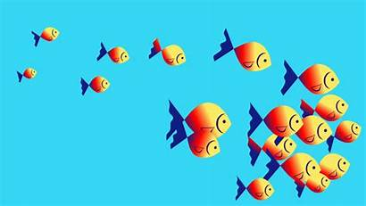 Fish Clipart Swimming Water Animation Cartoon Footage