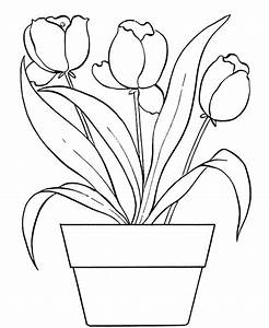 Pot Leaf Coloring Pages - Cliparts.co