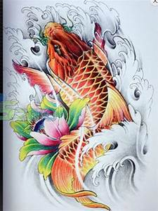 Koi De 9 En Israel : tattoo koi fish koi fish tattoo koi fish drawing v koi ~ Medecine-chirurgie-esthetiques.com Avis de Voitures