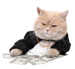 money cat tips to make money with social media mashbout