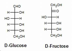 Glucose Fisher Projection