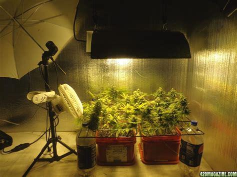 room setup small grow room setup ideas best indoor grow room design commercial marijuana grow rooms