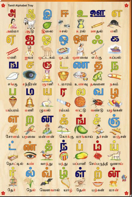 tamil alphabet picture tray rs  tamil tamil