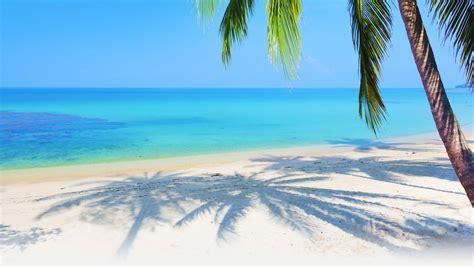 tourism  pattaya phuket  koh samui picks