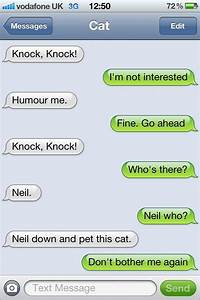 The Cat And The Knock Knock Joke
