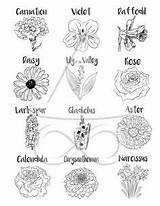 Coven Infinity Shadows Coloring sketch template
