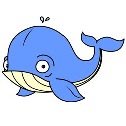 cartoon whale step  step drawing lesson