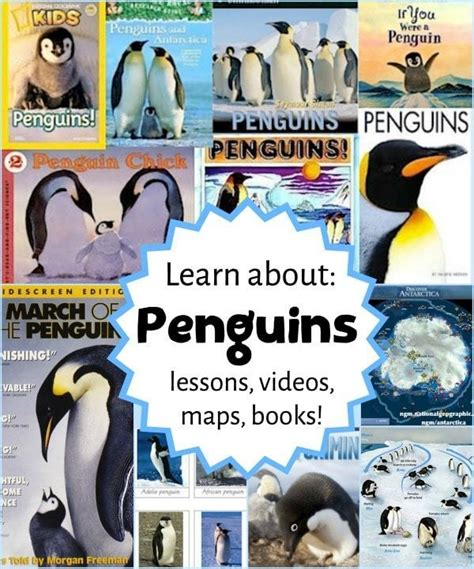penguins educational resources for parents and teachers 965 | 12313Learn about Penguins Resources for Kids