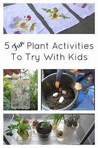 5 Fun Plant Activities To Try with Kids this Spring ...