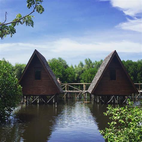 taman wisata alam mangrove wisata alam menyenangkan