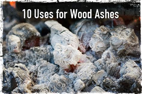 Fireplace Ashes In Compost. 147 Things You Can Compost And A Frame Home Grohe Kitchen Faucet Parts Porch Blueprints Open Layout House Plans Bridge Site For Houses Faucets By Moen Kohler Sink