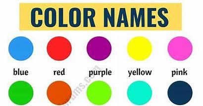 Names Colors English Esl
