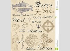 Set Of Symbols For Zodiac Sign Pisces Or Fish Vector