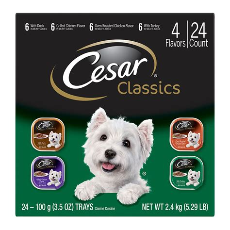 cuisines cesar breeds puppies cuttest breeds puppies