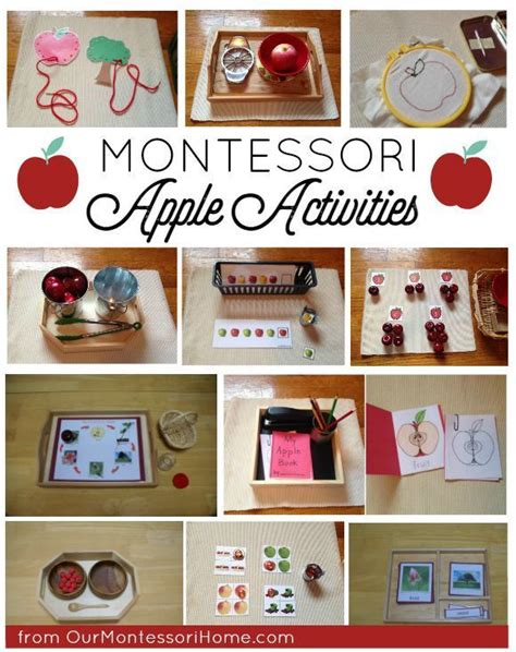 1000 images about apple activities pre k preschool on 475 | 3a447b3f4bb1ab4f85d6b5975002a281