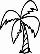 Palm Tree Coloring Printable Nature Kb Drawings sketch template