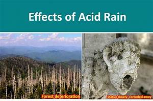 Acid Rain -[Definition, Formed, ph, Causes, Effects ...