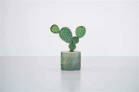 cool color images kaktus københavn copenhagen cool