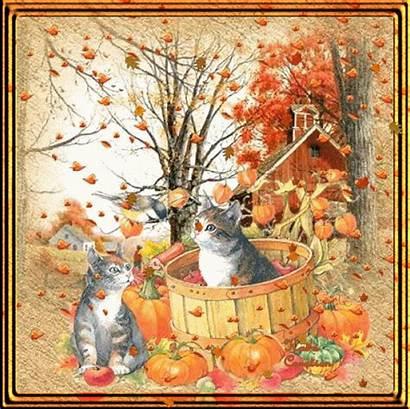 Fall Kitties Autumn Animated Cat Leaves Jesienne