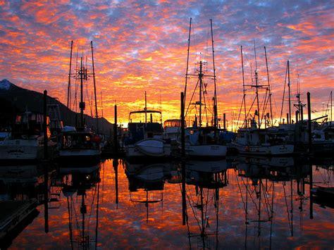 Boat Us Gold Membership by Bar Harbor Photograph By Les Harrington