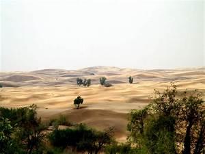 Thar Desert, Rajasthan HD Pics, Photos, Wallpapers ...