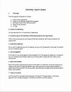 Biography  U0026 Internship Report Templates