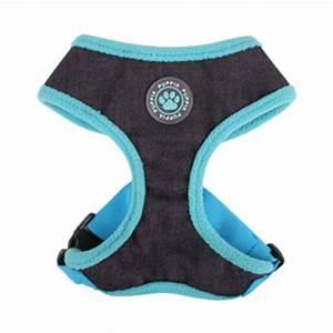 Puppia Soft Dog Harness Sizing Chart Blue Aqua Plush Puppia Harness 2 Sizes Available Bc