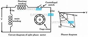 Wiring Diagram Induction Motor Single Phase