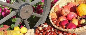 Garten Im Oktober : der garten im oktober gartenarbeit ~ Lizthompson.info Haus und Dekorationen