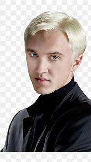 Draco Malfoy Harry Potter Png, Transparent Png - vhv