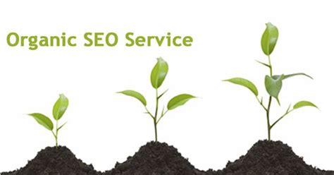 Organic Seo by Higher Ranking Organic Seo Services Makkpress