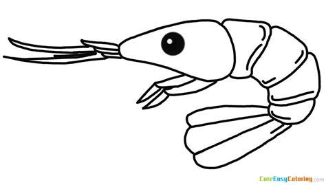 shrimp coloring page  printable  kids