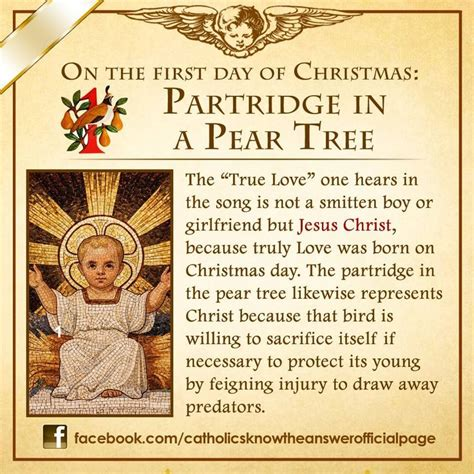 catholic christian meaning of christmas tree fhotos de catholics the answer teaching the gospel and pear trees