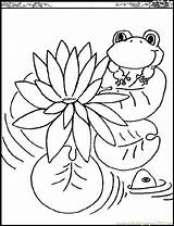 Lily Coloring Water Pages Pad Printable Monet Flowers Pads Claude Flower Lilies Drawing Outline Clipart Natural Coloringpages101 Waterlily Getcolorings Getdrawings sketch template