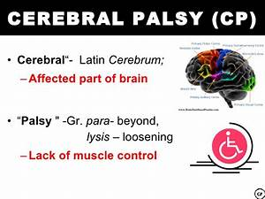 Dyspraxia & Cerebral Palsy – The similarities and ...
