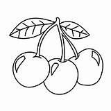 Cherry Cherries Coloring Pages Fruit Printable Fruits Stencil Three Tattoos Games Embroidery Para Wzory Pattern Momjunction Stencils Kolorowanki Haftow Colorear sketch template
