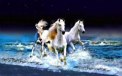 Horse Galaxy Samsung Wallpapers Iphone Desktop Ipad