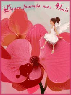 Mes orchidées ♥ - ♥ Mon jardin du Bonheur ♥